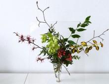 Zweige für die Vase
